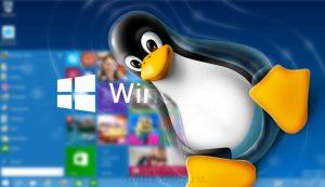 Windows 10 + Linux