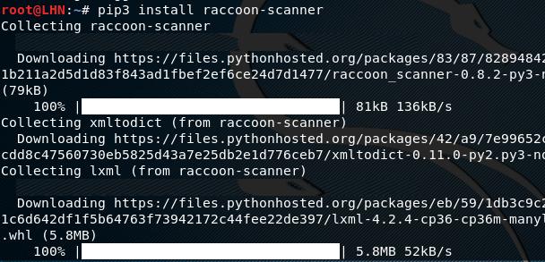 Установка инструмента raccoon