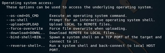 Опции для удаленного выполнения кода на машине