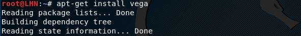 Установка инструмента сканирования безопасности Vega