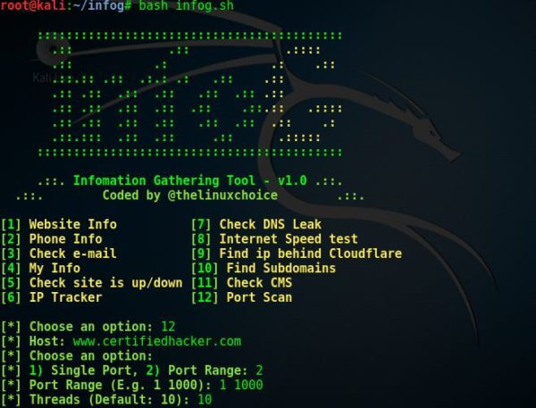 InfoG v1.0 — инструмент для сбора информации